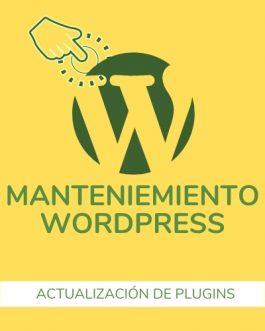 Actualización y revisión de Plugins en WordPress